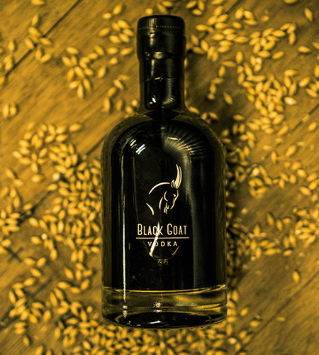 Black goat product photo